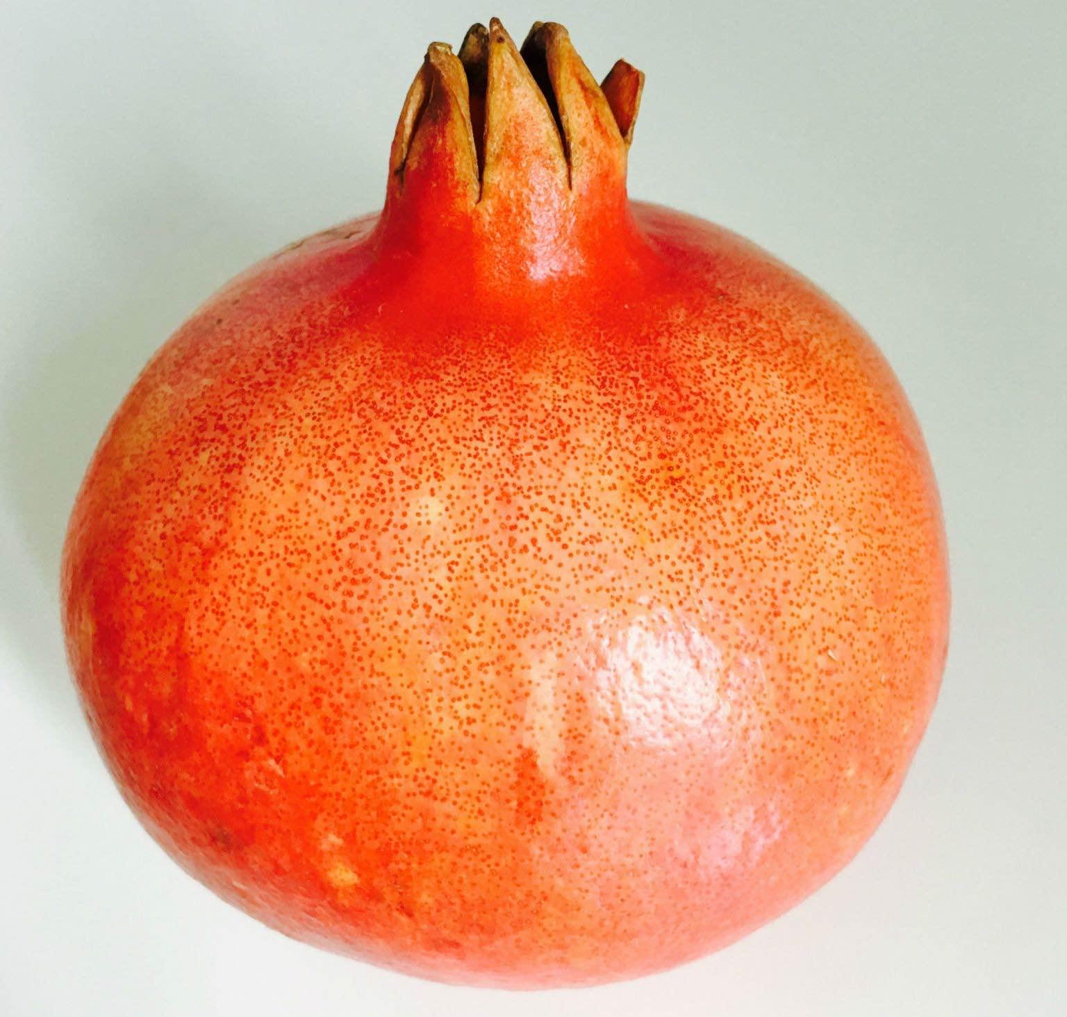 fha-granatapfel-fotor-text-0